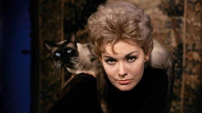 Kim Novak e mais o gato Pyewacket